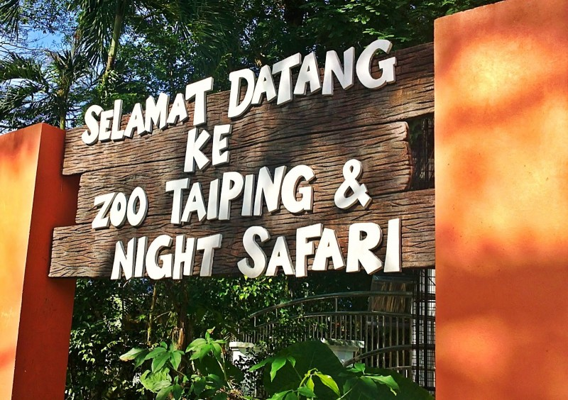 6 Best Things To Do In Taiping