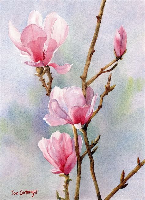 Watercolor By Joe Cartwright, Magnolia Flower