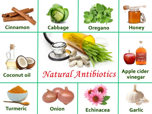 Natural Antibiotic Strips Bacteria Of Their Defenses