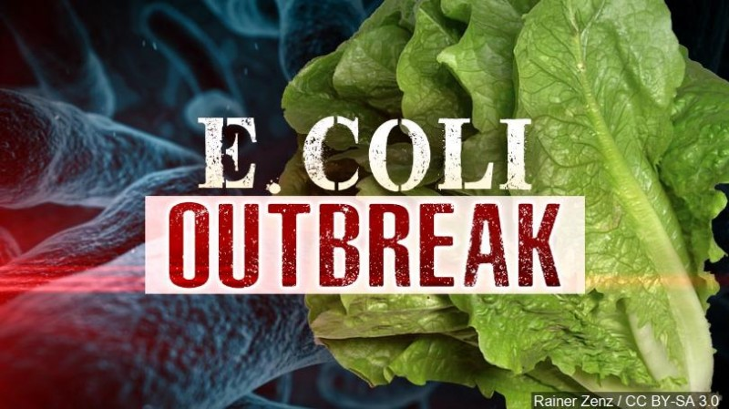 Romaine Lettuce From California Linked To Multistate E. Coli Outbreak