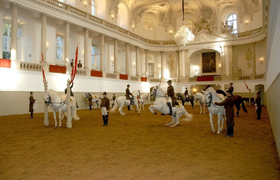 Vienna: Spanish Riding School Morning Exercise