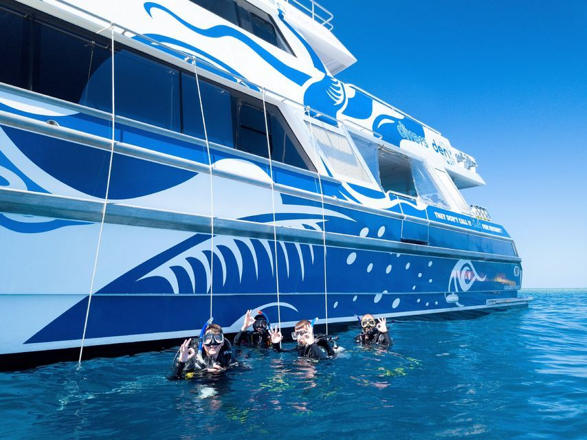From Cairns: Luxury Great Barrier Reef Snorkeling & Diving